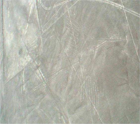 Nasca Linien Kolibri  Peru Reiseveranstalter www.chirimoyatours.com