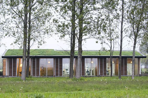Vanuit de behandelkamers kijk je uit op de groene natuur
