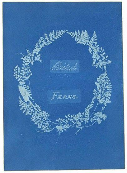 Anna Atkins, 'Title page of British Ferns' | V&A