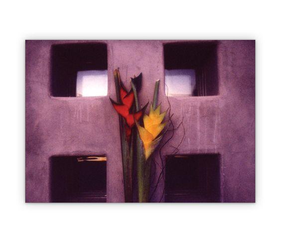 Foto Grußkarte mit Blumen Design - http://www.1agrusskarten.de/shop/foto-gruskarte-mit-blumen-design/    00011_0_483, Blume, Blumen, Blumengruß, Grußkarte, Klappkarte00011_0_483, Blume, Blumen, Blumengruß, Grußkarte, Klappkarte
