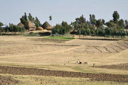 Ethiopia countryside
