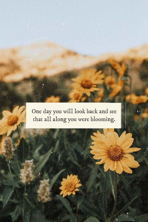 Fashion Wallpapers Quotes Celebrities And So Much More Flower Quotes Flower Quotes Love Sunflower Quotes