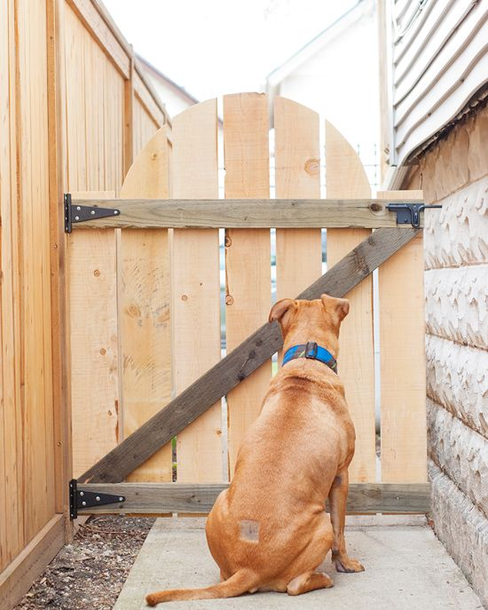 Simple Effective DIY Outdoor Gate via Yellow Brick Home
