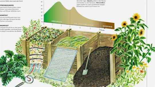 Wie Millionen von Klein- und Kleinstlebewesen unseren Biomüll in nützlichen Humus verwandeln