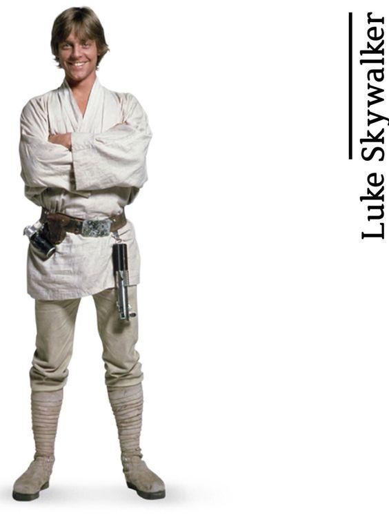 """Luke Skywalker - from """"A Fans Guide to Star Wars"""" by daniekl #StarWars"""