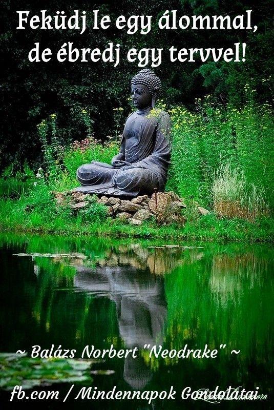 álommal kapcsolatos idézetek Álom Terv | Outdoor, Garden sculpture, Outdoor decor