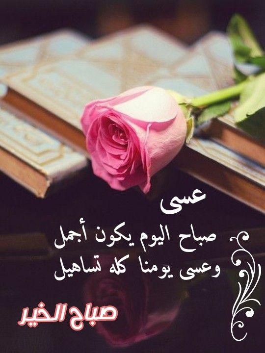 صباح النور والسرور والورد المنثور Rose Flowers Plants