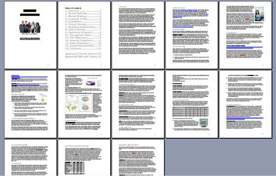 internet business plan format