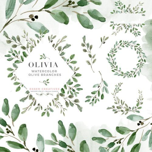 Olive Branches Wreath Png Green Botanical Free Image By Rawpixel Com Noon In 2020 Olive Branch Wreath Olive Branch Free Illustrations