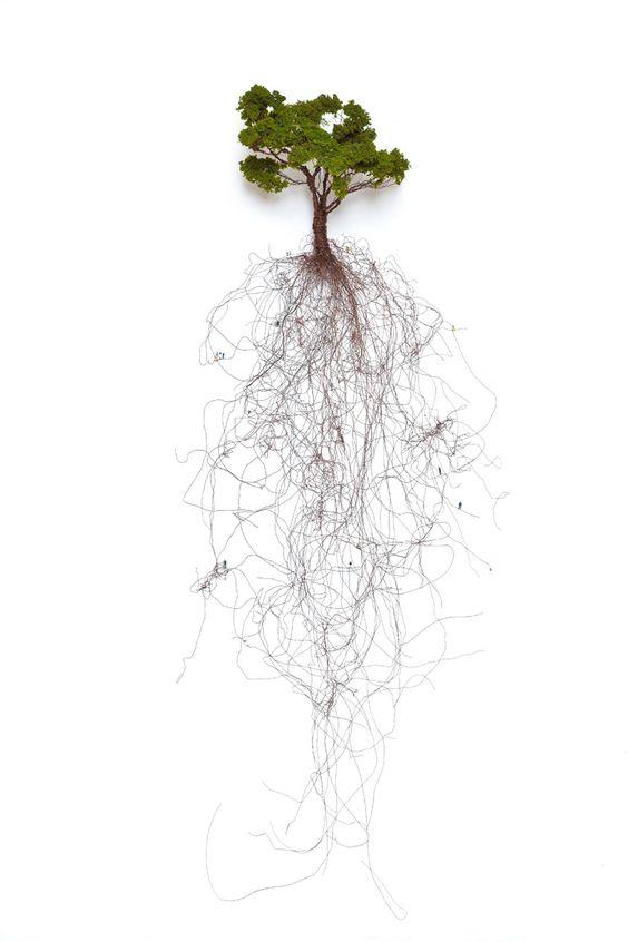 "Shane Pennington  ""The Giving Tree"""