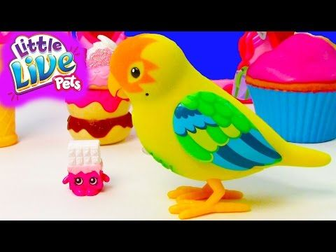 Little live pets, Pet birds and Shopkins on Pinterest