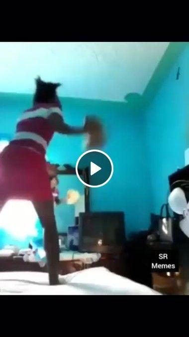 Garota caçando lagarto na cozinha