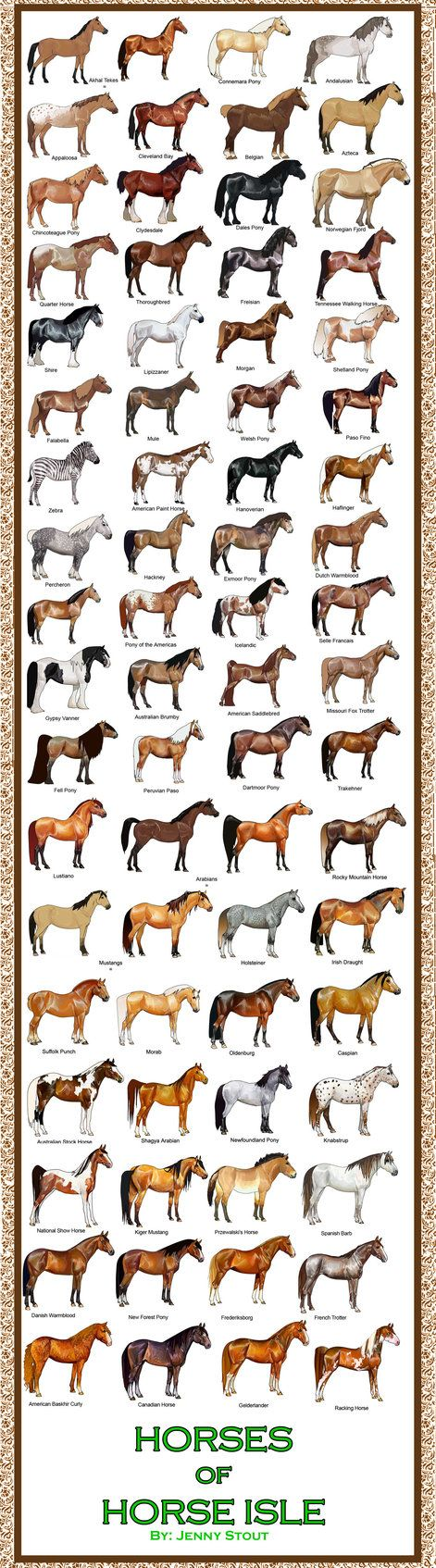 Breed Chart: Horseisle 1-69 by eponagirl on deviantART