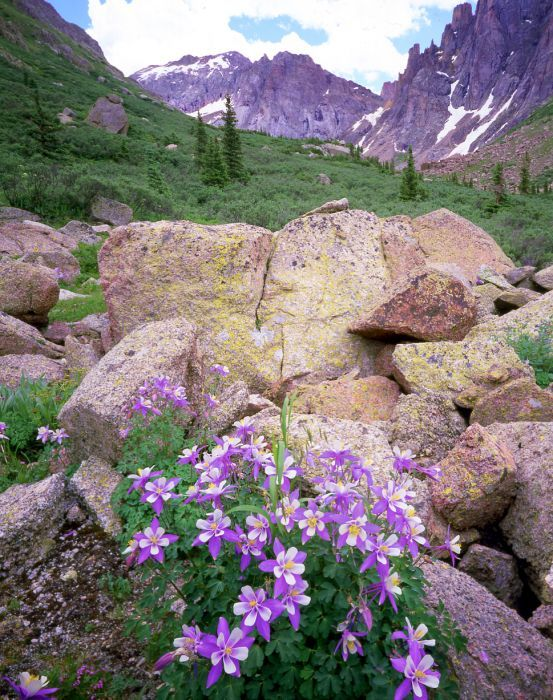 Weminuche Wilderness near Durango, Colorado
