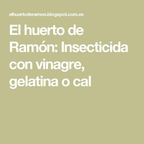 El huerto de Ramón: Insecticida con vinagre, gelatina o cal
