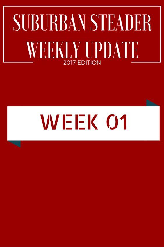 Weekly Upate - 2017 - Week 01