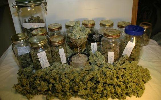 Grow Q&A: Storing Marijuana | High Times