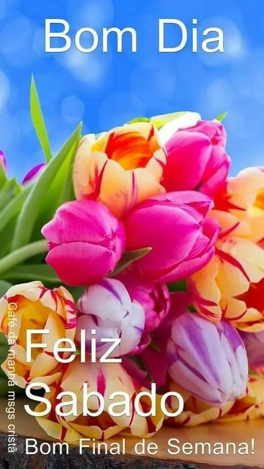 Pin De Griseth Em Inspiration Quotes Belas Flores Arranjos De