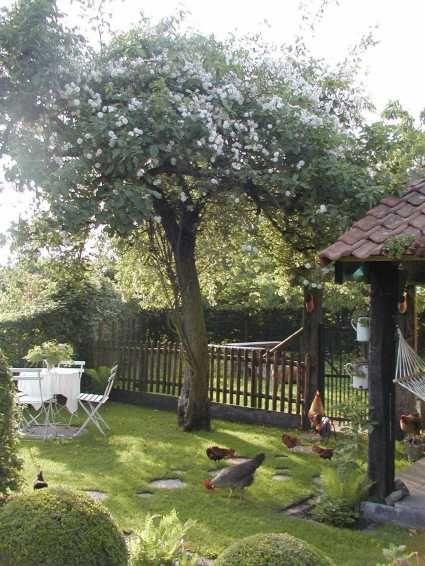 Un petit air de campagne jardin pinterest gazon for Table exterieur gazon