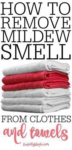 smell of mold and mildew