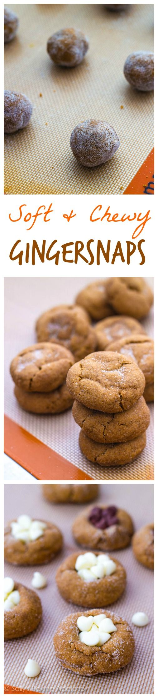 Molasses cookies, Cookies and White chocolate on Pinterest
