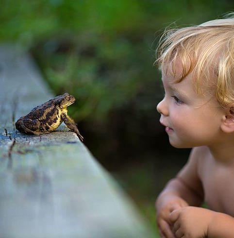 Child discovering frog with gaze of wonder. #summer #frog #heartwarming #childhood
