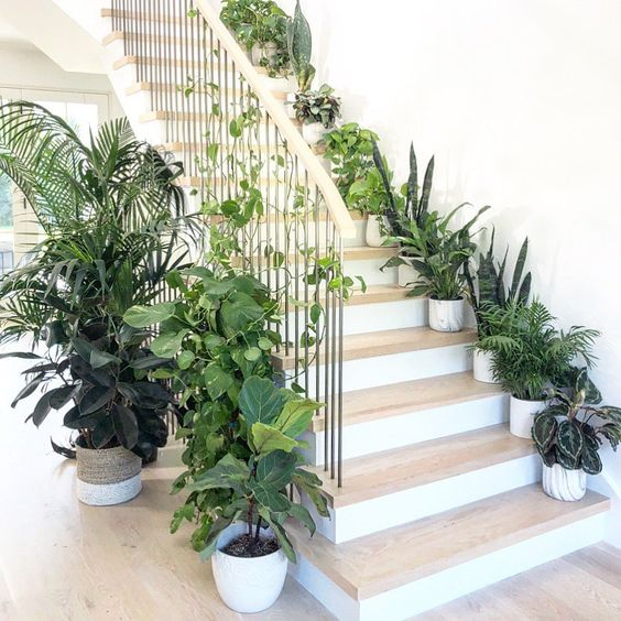 "Planterina on Instagram: ""STAIRWAY TO HEAVEN. Another favorite plant styling moment! ... 🌱 First of all, this steel and bleached oak staircase itself is to die for…"" #plants #green"