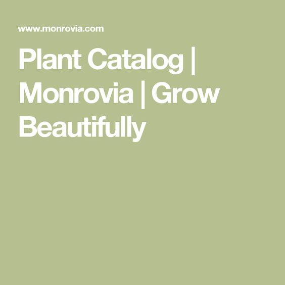 Plant Catalog Monrovia Grow Beautifully GardenMonrovia