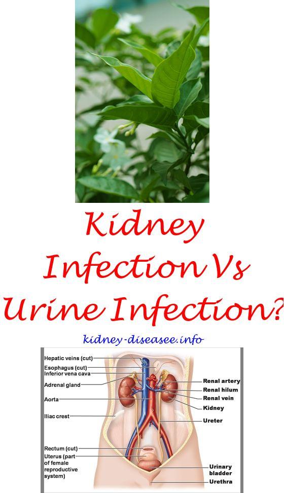 Diabetic Kidney Disease Chronic Kidney Disease Diet Kidney Treatment Kidney Disease Diet