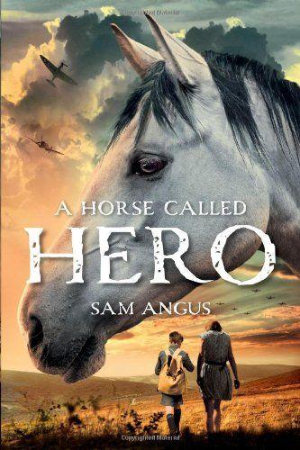 A Horse Called Hero by Sam Angus http://www.amazon.com/dp/1250045088/ref=cm_sw_r_pi_dp_QB-Vtb0SCYY8092A