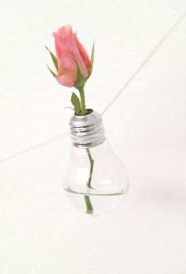 vaasje van een gloeilamp / lightbulb into vase
