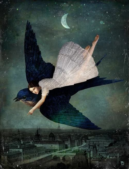 Fly me to Paris by Christian Schloe   (Also see Black Swan):