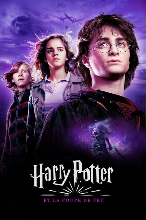 Harry Potter And The Goblet Of Fire 2005 Full Movie Image Wallpaper Download Peliculas De Harry Potter Fotos De Harry Potter Caliz De Fuego