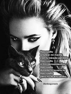 Los poemas del gato negro: Has vuelto