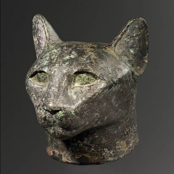 Egyptian Bronze Head of a Cat, Late Period, (6th-4th Century B.C.)  , Bronze