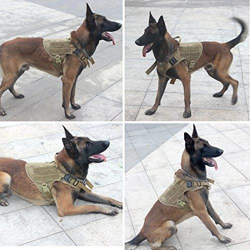 Icefang Dog Harness Medium Breed Tactical Molle Dog Vest No Pull Front Clip Unbreakable Quick Release Metal Buckle Snap Proof M 25 30 Girth Cb Molle Half B Tactical Dog Harness Dog Harness Medium Dog Harness