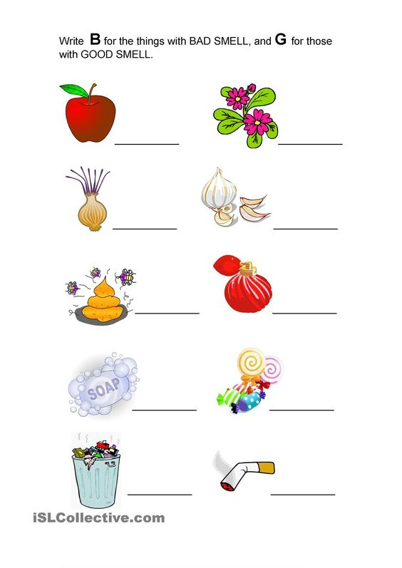 Good Smell And Bad Smell Preschool Worksheets Kindergarten Worksheets Kindergarten Worksheets Printable Sense of smell worksheets