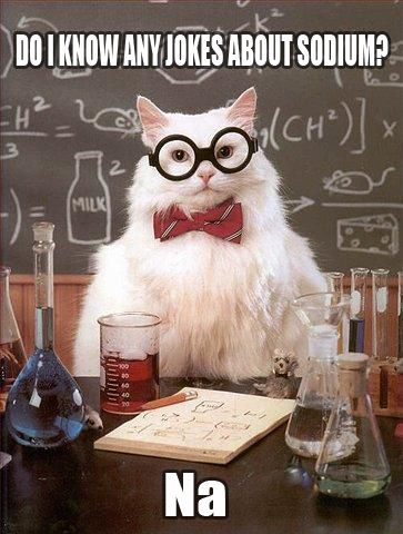 It's a cat. with a bow tie and glasses. And a chemistry joke. And chemistry stuff in the background.
