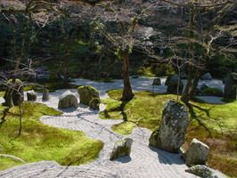 japanischer garten koi bonsai stein-garten jahreszeiten, Garten Ideen