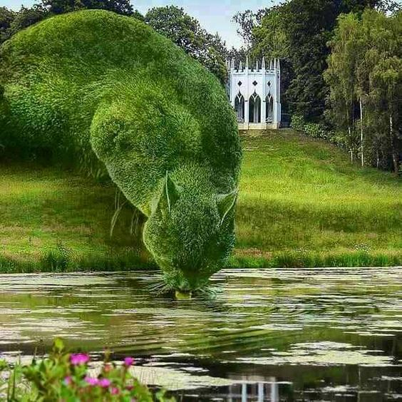 TOPIARY CAT  The Topiary Cat is a surrealist photographic montage series based on the cat, Tolly, of Richard Saunders.: