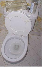 Clean Metal Marks Off A Porcelain Toilet Toilets Metals