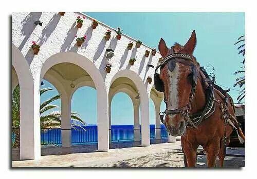 Arcos  junto al mar  Nerja    Malaga
