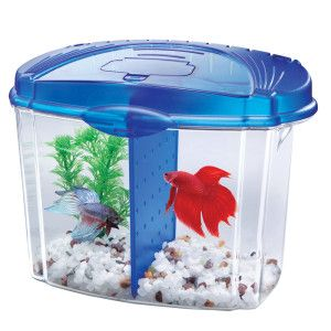Aqueon betta bowl starter kit aquariums petsmart for Betta fish tanks petsmart