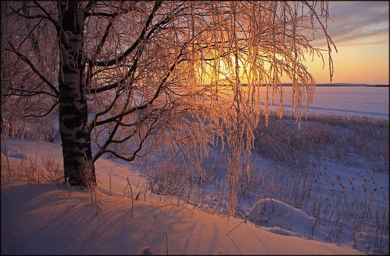 Winter morning ... - Valtteri Mulkahainen