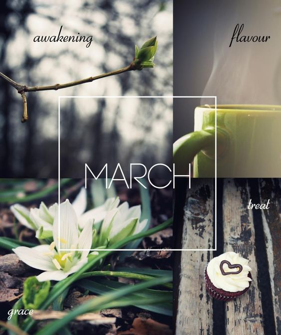 Got me thinking about colors - gray and bright splash of green to signify spring is near.: