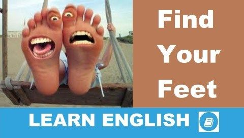 lábujj angolul