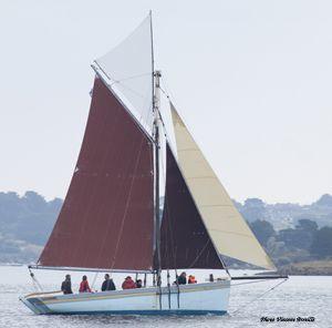 Sorties en mer à bord de l'Ausquémé à Port-Blanc