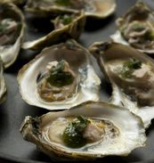 Roasted River Oysters