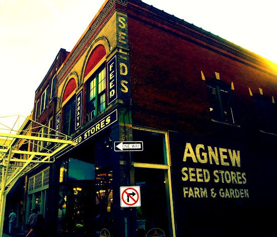 agnew seed shop...downtown roanoke...rural thursday