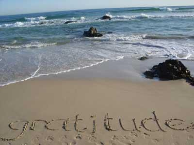 I am grateful for the ocean
